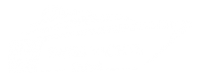 Swiss Yachts Dubai - Website Design - Digital Marketing - SEO